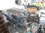 V8 Çıkma Travego Motor